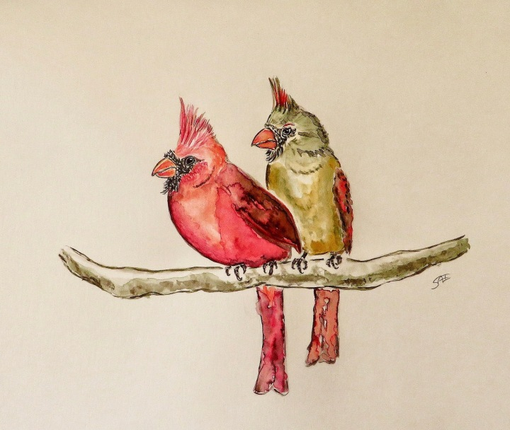 a pair of cardinals Kopie