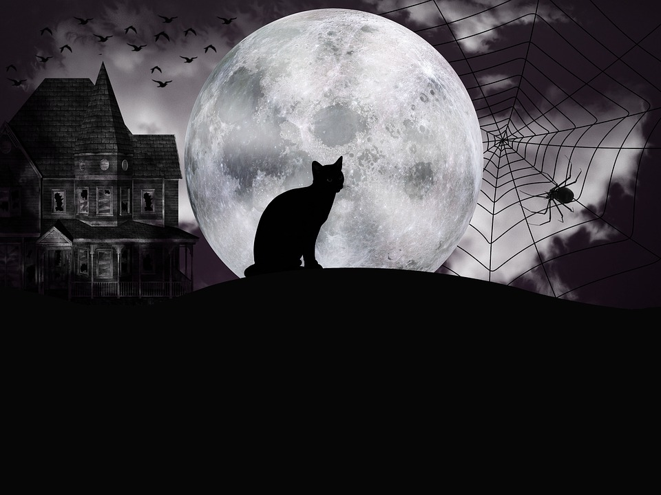 halloween-3696571_960_720