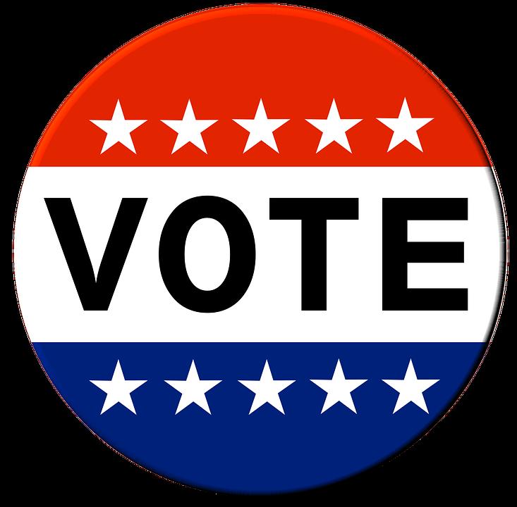 vote-1319435_960_720