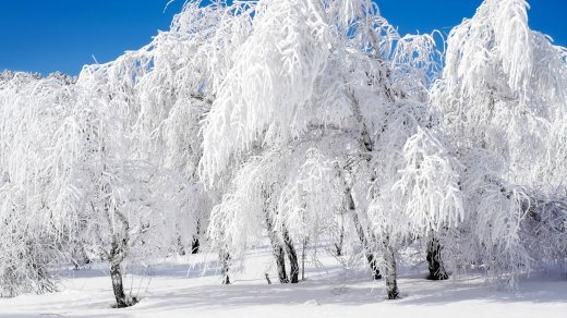 HD-Winter-Wallpapers-292